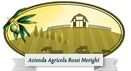 agricolarossimerighi.it